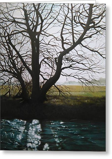 Trent Side Tree. Greeting Card
