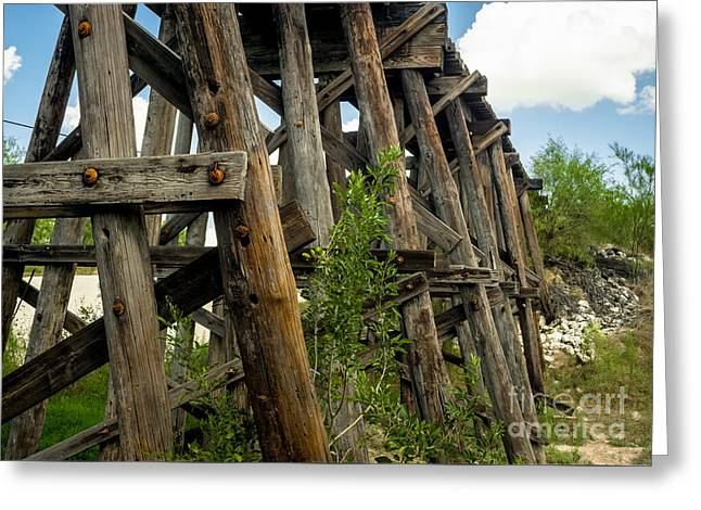 Trestle Timber Greeting Card