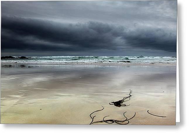 Treyarnon Bay,  Cornwall, Uk.. Greeting Card by Maggie McCall