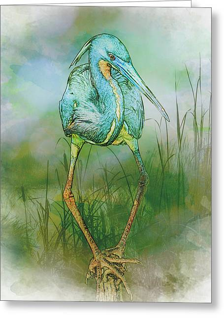 Tri-colored Heron Balancing Act - Colorized Greeting Card