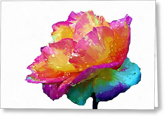 Greeting Card featuring the photograph Tri Color Rose by Joseph Frank Baraba