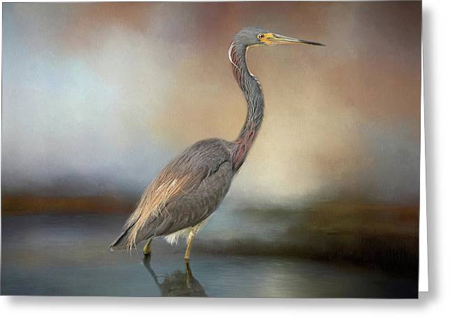 Tri-coloured Heron Greeting Card