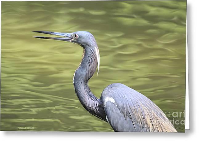 Tri Heron On Silk Greeting Card