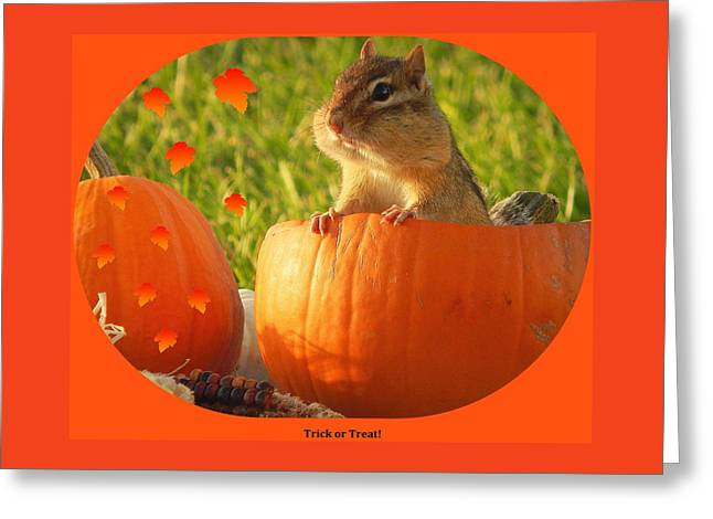 Trick Or Treat Greeting Card by Karen Cook