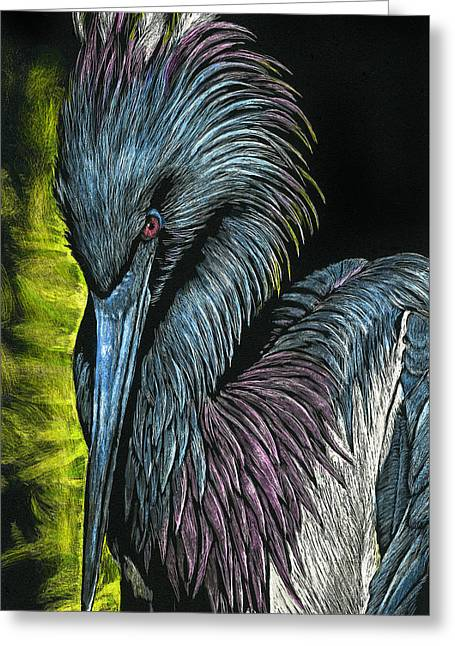 Tricolor Bird Greeting Card