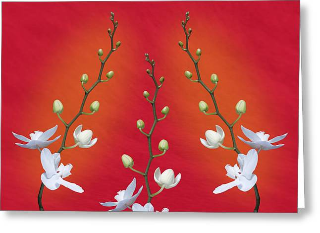 Trifecta Of Orchids Greeting Card