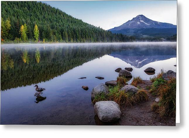 Trillium Lake Duck Greeting Card