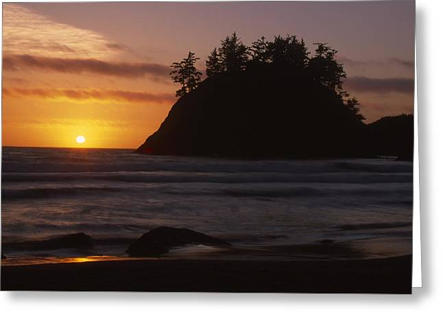 Trinidad Beach Greeting Card by Soli Deo Gloria Wilderness And Wildlife Photography