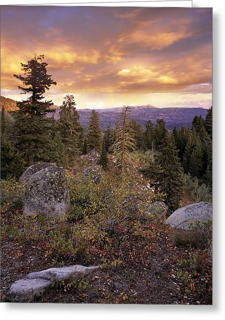 Trinity Mountains Greeting Card by Leland D Howard