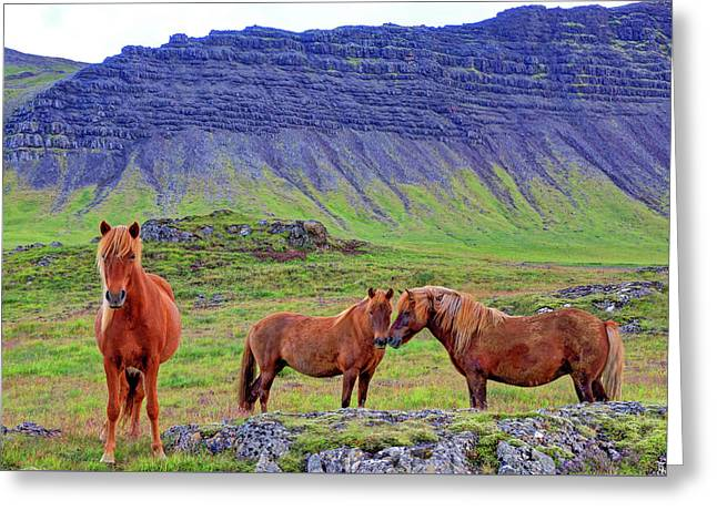 Greeting Card featuring the photograph Triple Horses by Scott Mahon