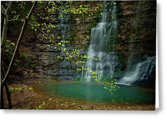 Tripple Falls Greeting Card by Iris Greenwell