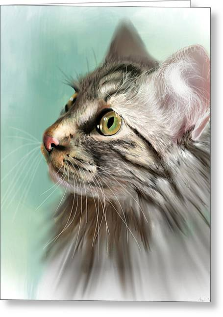 Trixie The Maine Coon Cat Greeting Card by Angela Murdock