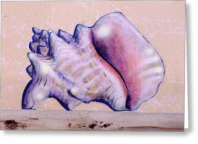 Trompe L'oeil Conch Shell Greeting Card
