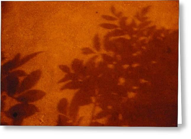Tropic Sands Greeting Card by Stephen Davis