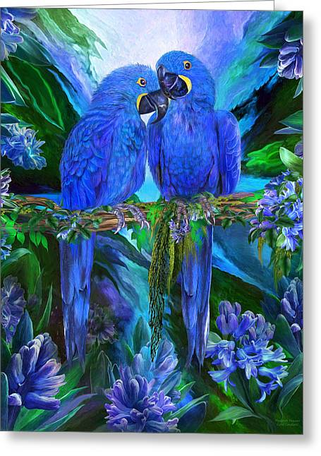 Tropic Spirits - Hyacinth Macaws Greeting Card