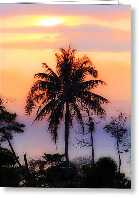 Tropical 6 Greeting Card
