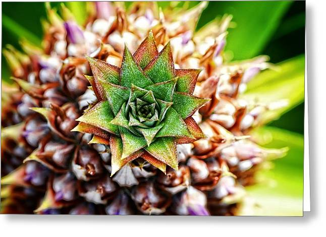 Tropical Art - Pineapple Punch - Sharon Cummings Greeting Card