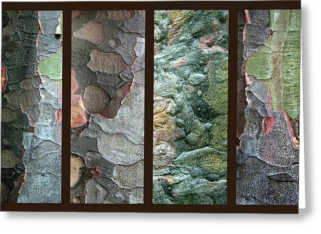 Tropical Bark Collage II Greeting Card by Jessica Jenney