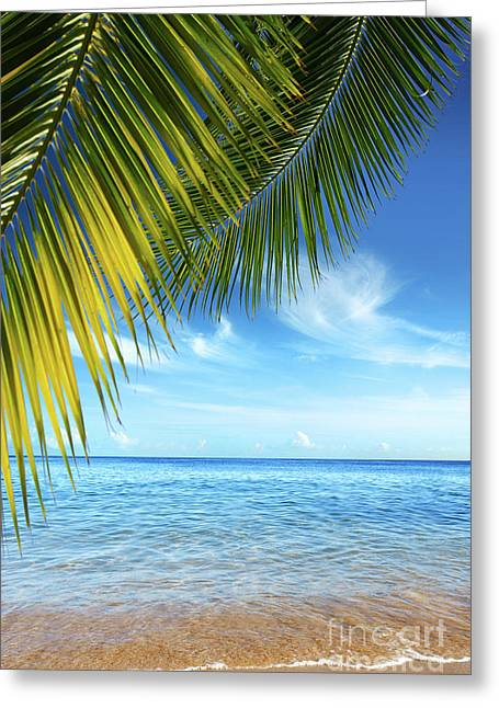 Resort Photographs Greeting Cards - Tropical Beach Greeting Card by Carlos Caetano