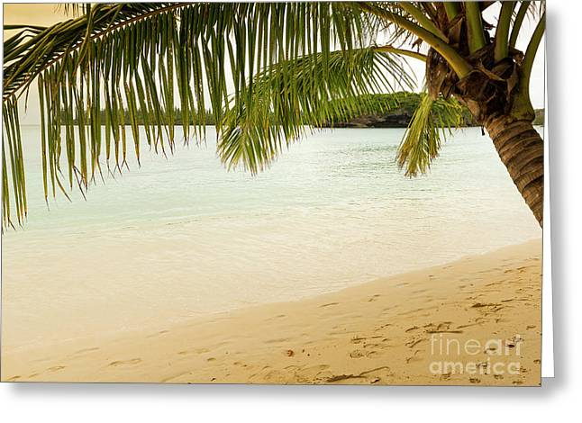 Tropical Beach Scene Greeting Card by Tim Hester