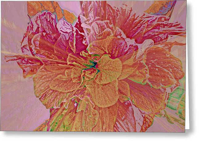 Tropical Beauty Greeting Card by Rose  Hill