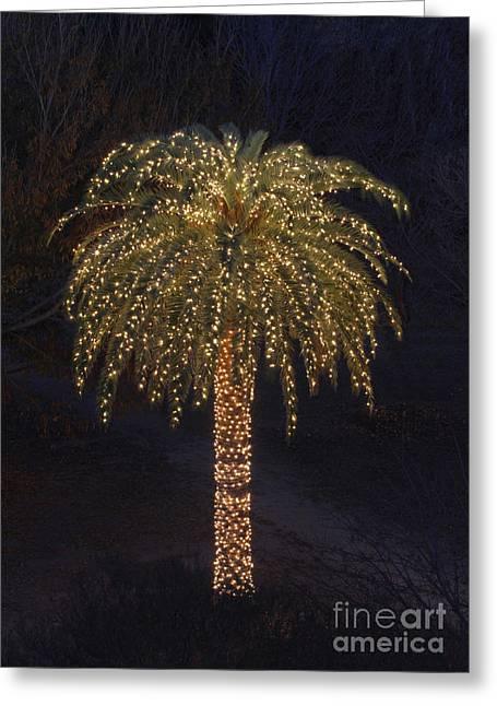 Tropical Christmas Greeting Card