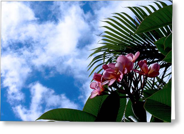 Tropical Days Greeting Card by Edan Chapman