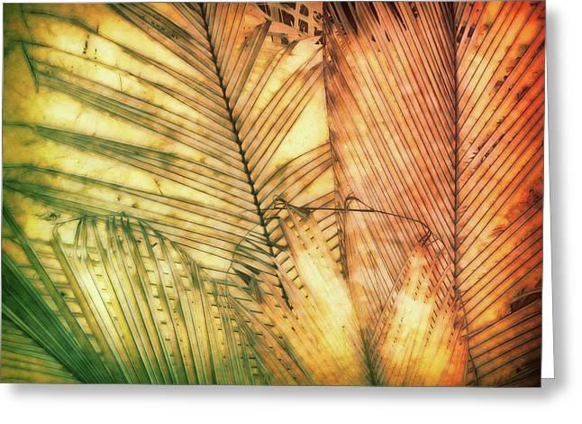 Tropical Dream Greeting Card by Ann Powell