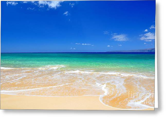 Greeting Card featuring the photograph Tropical Fantasy  by Kelly Wade