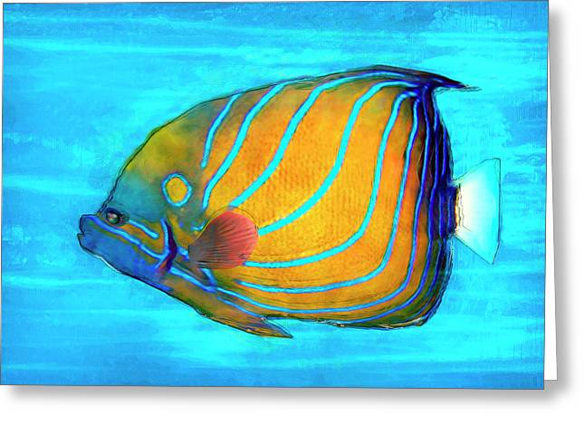 Tropical Fish Painted Greeting Card by Jack Zulli