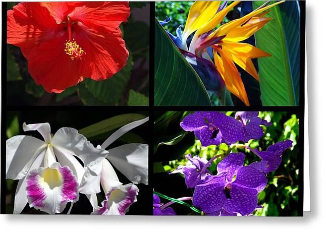 Tropical Flowers Multiples Greeting Card by Susanne Van Hulst