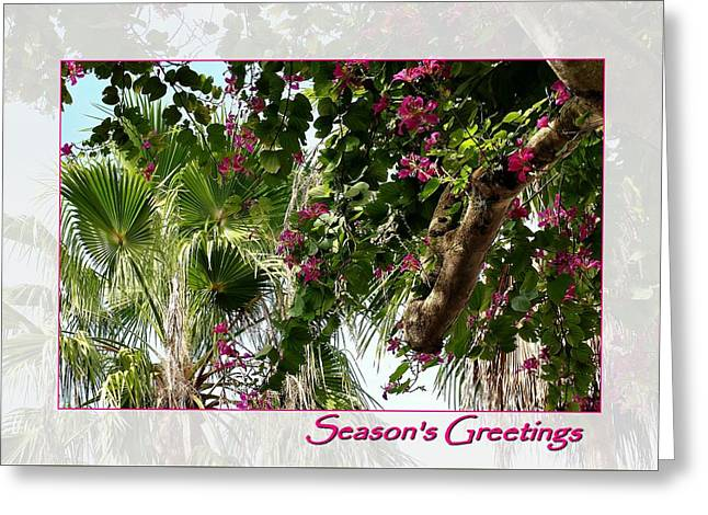 Tropical Holidays Greeting Card