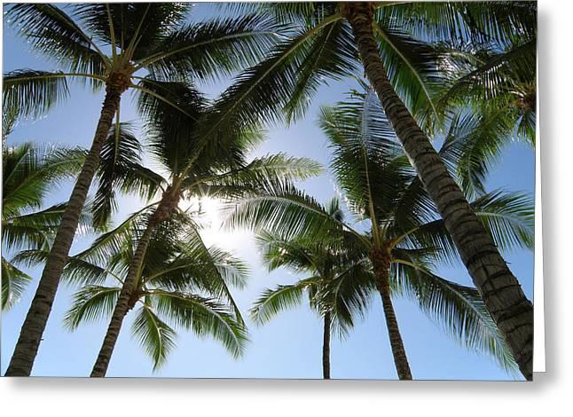 Tropical Mood Greeting Card