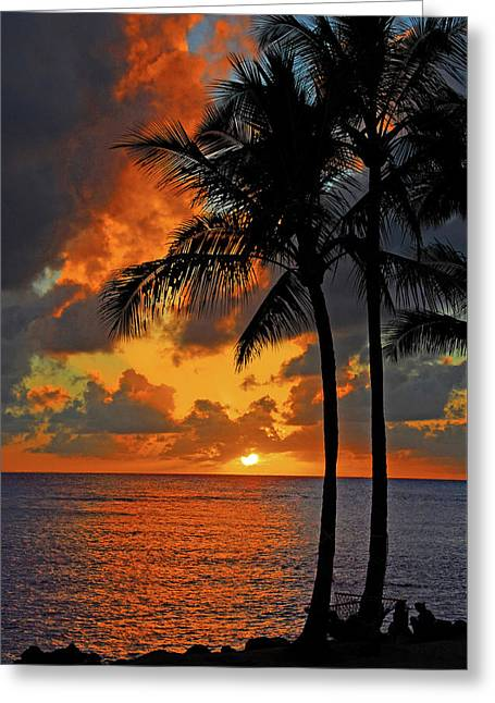 Tropical Nights  Greeting Card by Lynn Bauer