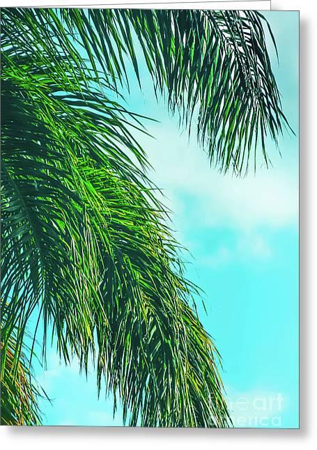 Tropical Palms Maui Hawaii Greeting Card by Sharon Mau
