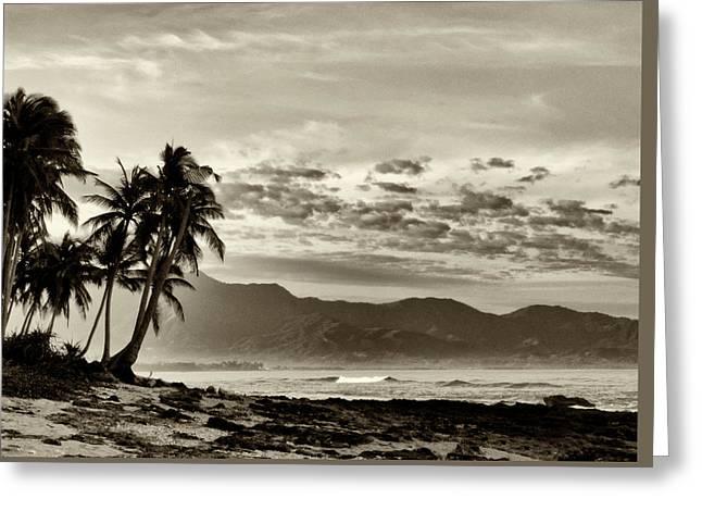 Tropical Paradise  Greeting Card by Skip Nall