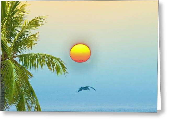 Tropical Sun Greeting Card by Bill Cannon