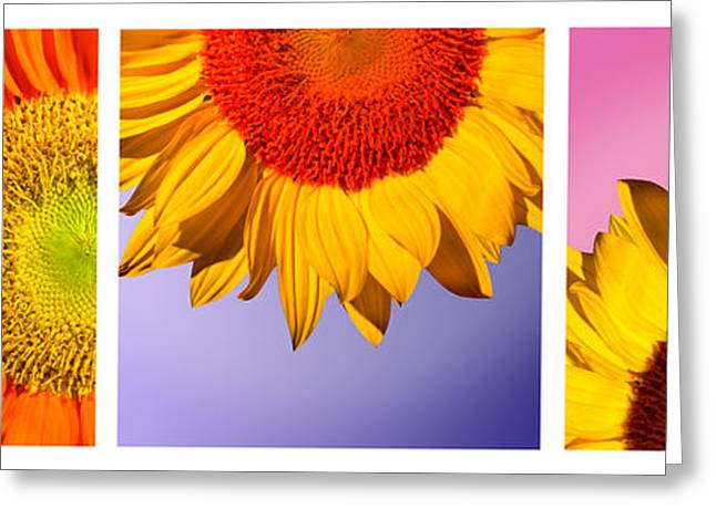 Tropical  Sunflowers Greeting Card