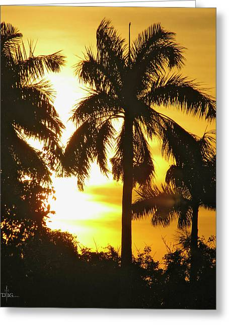 Tropical Sunset Palm Greeting Card