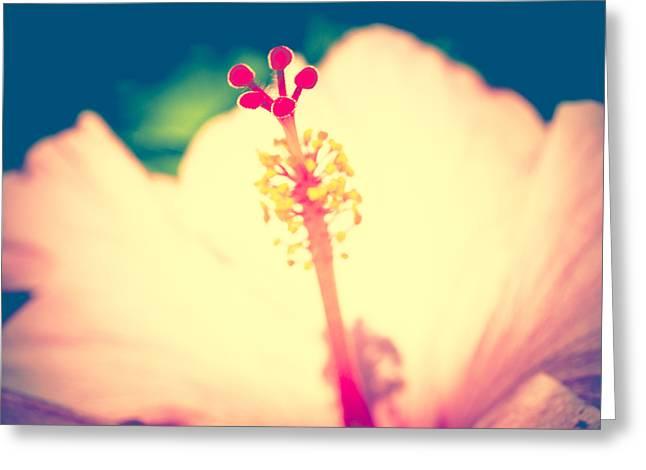 Tropical Technicolor Greeting Card by Christi Kraft
