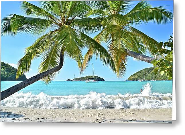 Tropical Treat Greeting Card by Frozen in Time Fine Art Photography