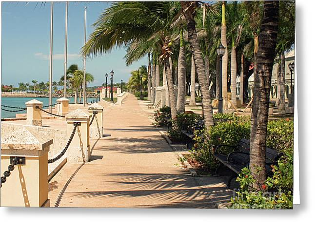Tropical Walkway Greeting Card