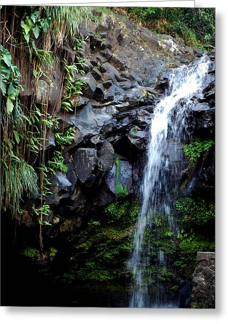 Greeting Card featuring the photograph Tropical Waterfall by Gary Wonning