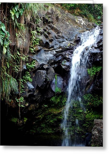 Tropical Waterfall Greeting Card