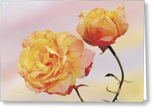 Tropicana Roses Greeting Card by Jan Baughman