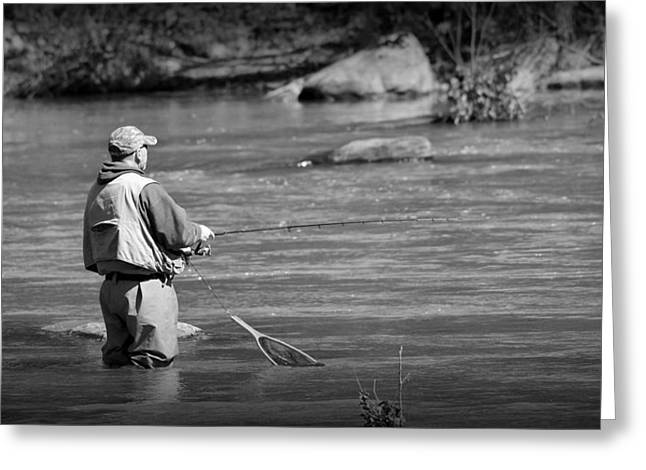 Trout Fishing 1 Greeting Card by Todd Hostetter