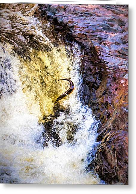 Trout Jumping Greeting Card by Susan Rissi Tregoning