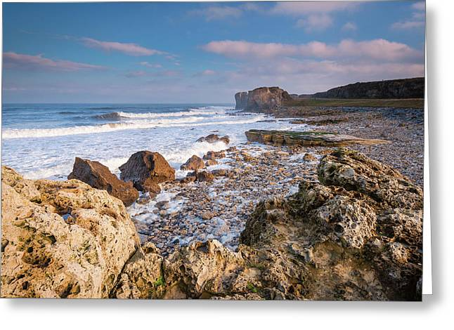 Trow Rocks At South Shields Greeting Card by David Head