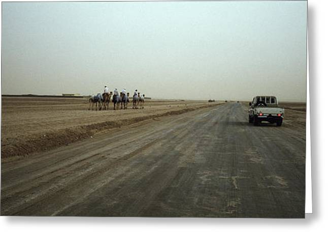 Truck And Camels On A Road, United Arab Greeting Card