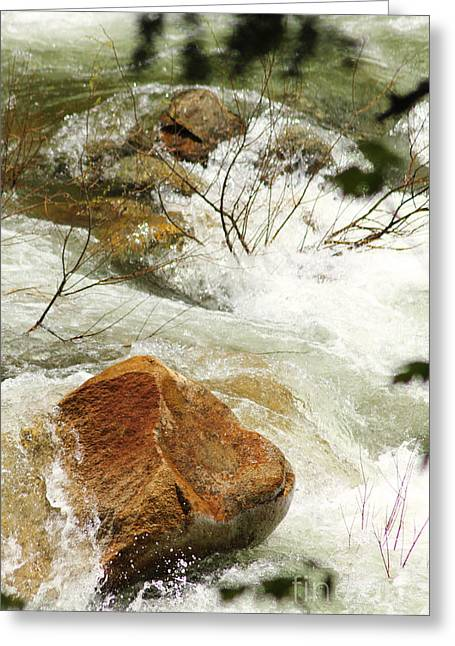 Truckey River Greeting Card